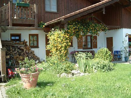 Reiterhof Reglauer Bildergalerie 08 - www.reiterhof-reitstall-muenchen.de